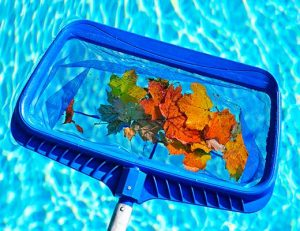 pool maintenance tips and advice for your new Gold Coast swimming pool.